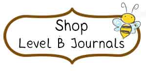 Shop Level B Journals