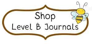 Shop Level B Journals
